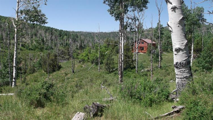 Cabin 80 acres Miners Peak, Cedar City, UT 84720
