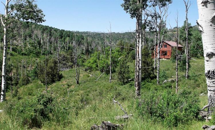 Cabin on 20 Acres Miners Peak, Cedar City, UT 84720