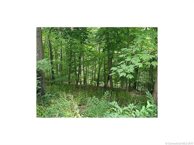 Lot 1 Hanks Hill Rd, Mansfield, CT 06268