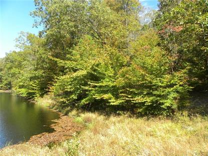 XXX E State Road 46  Nashville, IN MLS# 21699838