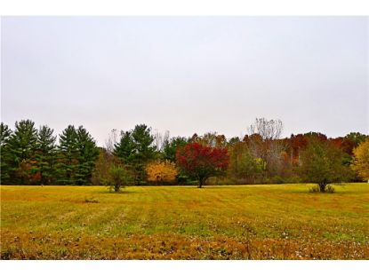 0 W Creek Drive Pendleton, IN MLS# 21746646