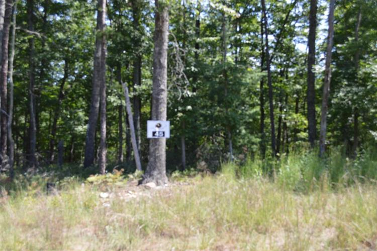 Lot 45 Black Diamond DR, New Castle, VA 24127