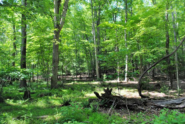 Woods On The Lake RD, Radford, VA 24141 - Image 1