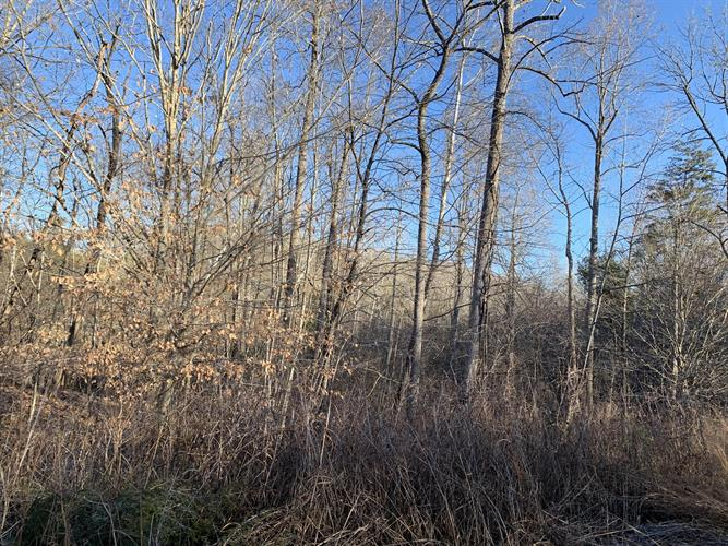 Lot 22 Tarragon WAY, Moneta, VA 24121 - Image 1