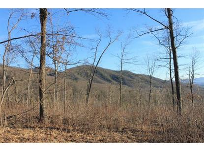 Tract A Narrow Passage RD Eagle Rock, VA MLS# 777375