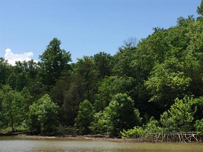 LOT 61 STILLWATER LN, Pittsville, VA