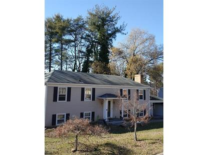 5939 Flamingo DR SW Roanoke, VA MLS# 839939
