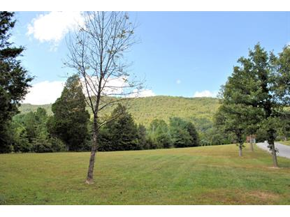 3480 Knob Forest CIR Elliston, VA MLS# 842769