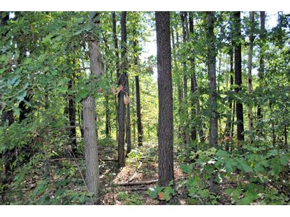 3601 Knob Forest CIR Elliston, VA MLS# 842770
