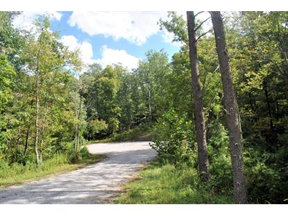 3720 Knob Creek TRL Elliston, VA MLS# 842771