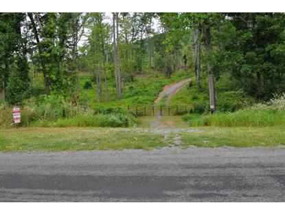Buffalo Run RD Thaxton, VA MLS# 843941