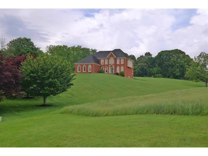 481 Plantation DR, Fincastle, VA