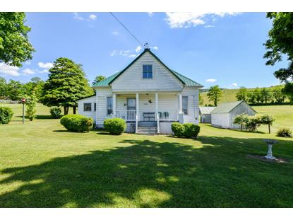 19282 CUMBERLAND GAP RD New Castle, VA MLS# 849461