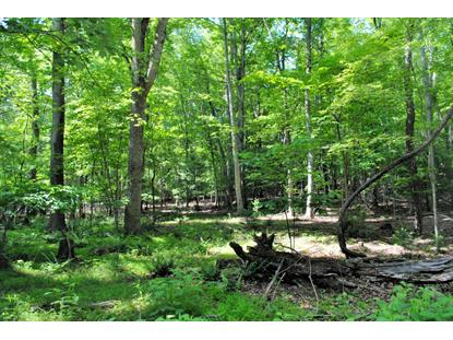 Woods On The Lake RD Radford, VA MLS# 849889