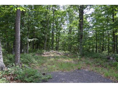 Lot 97 Black Diamond DR New Castle, VA MLS# 850217