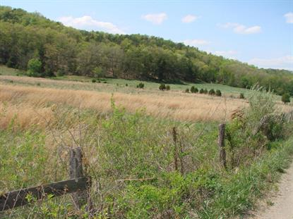 Wood Hollow RD Clifton Forge, VA MLS# 850542