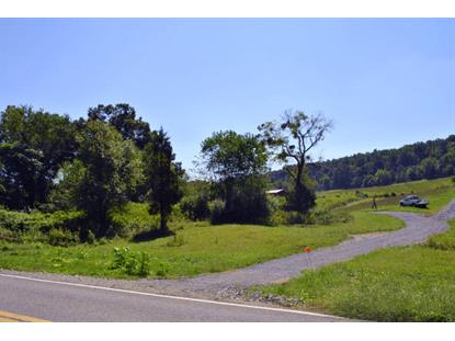 000 Little River Dam RD Radford, VA MLS# 852449