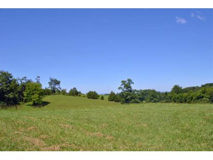 00 Little River Dam RD Radford, VA MLS# 852450