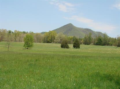 000 Red Hill RD Clifton Forge, VA MLS# 852610