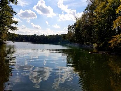 Lot 22 Water Edge Pointe  Goodview, VA MLS# 856407