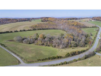 00 White House RD Moneta, VA MLS# 858168
