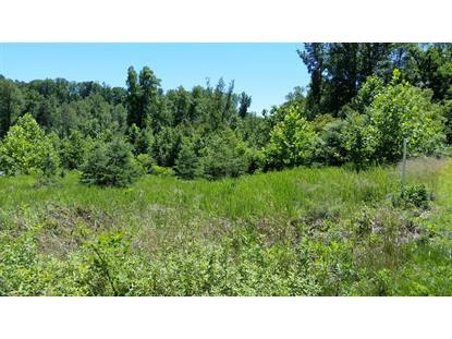Lot 48 Waterside DR Goodview, VA MLS# 860265