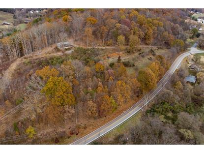 Sherwood LN Natural Bridge Station, VA MLS# 860817