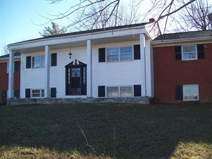 338 Old Wagon RD Fincastle, VA MLS# 866090