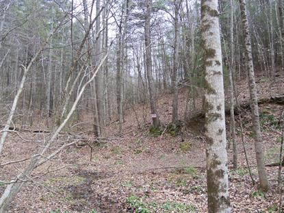 Lick Ridge RD Check, VA MLS# 866475