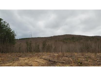 TRACT 4 COOPERS MOUNTAIN RD Martinsville, VA MLS# 866850