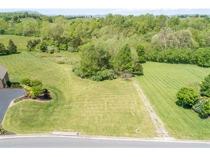 Frontier WAY Fincastle, VA MLS# 869178