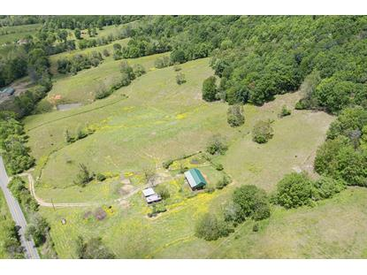 Bore Auger RD Blue Ridge, VA MLS# 869347