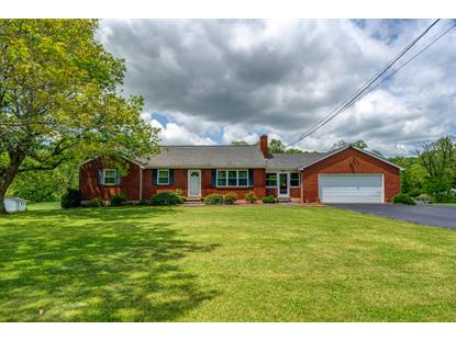 3293 Webster RD Blue Ridge, VA MLS# 869459