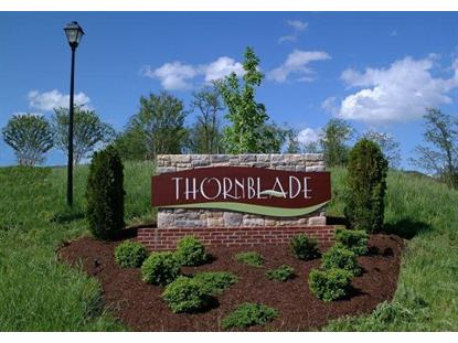 Lot 42 Thornblade WAY Blue Ridge, VA MLS# 869492