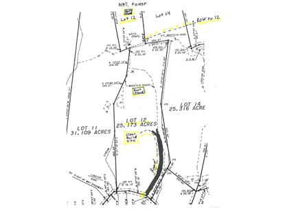 Lot 12 Mount Chestnut RD New Castle, VA MLS# 869609