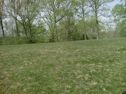 LOT  112 BAILEY BLVD Hardy, VA MLS# 869720