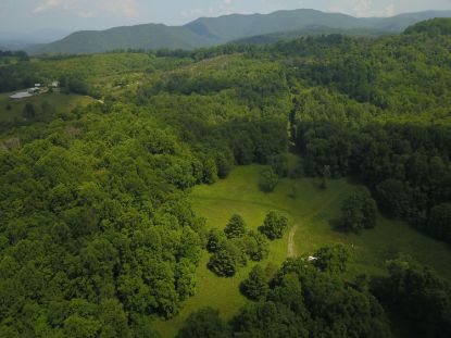 00 Sugar Run RD NE Copper Hill, VA MLS# 872332