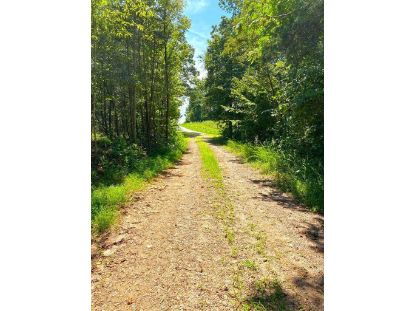 000 Fork Mountain RD Bassett, VA MLS# 872493