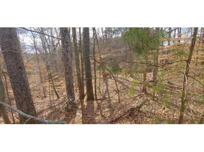 Lot 9 Bridgewater LN Moneta, VA MLS# 873090