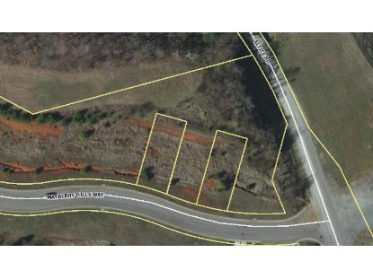 Lot 170A Mayberry Hills WAY Moneta, VA MLS# 873613