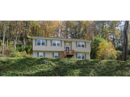 9520 Twin Falls RD NE Copper Hill, VA MLS# 874393