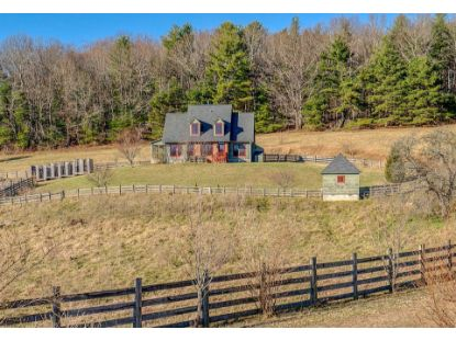 311 Timberline RD Copper Hill, VA MLS# 875694