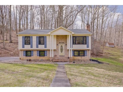 411 PIN OAK DR Blue Ridge, VA MLS# 876044
