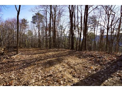 Grandview DR Troutville, VA MLS# 876282