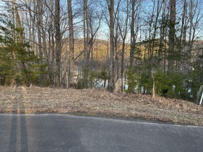 Lot 485 Spur CT Penhook, VA MLS# 877202