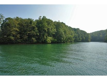 HICKORY COVE LN Moneta, VA MLS# 878754