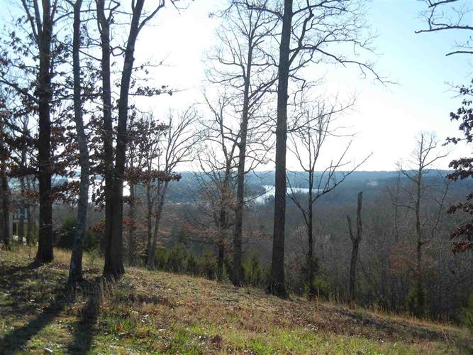 489 RIVERS EDGE, Bath Springs, TN 38311 - Image 1