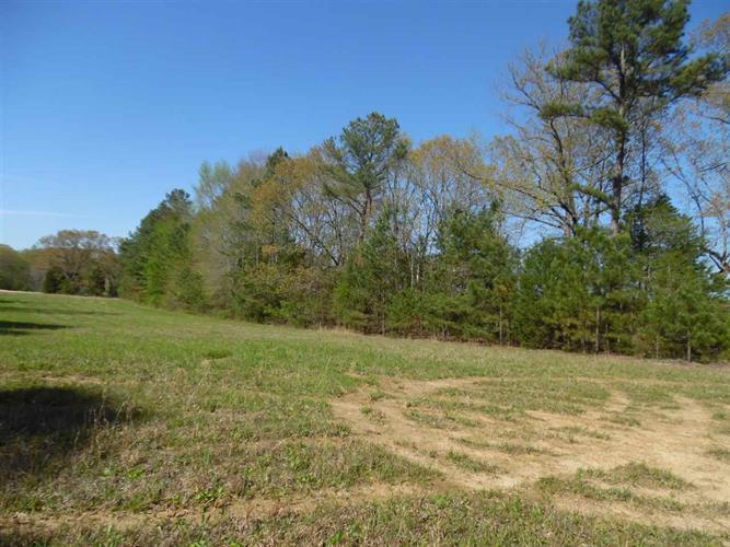 24 NEW HOPE, Adamsville, TN 38310