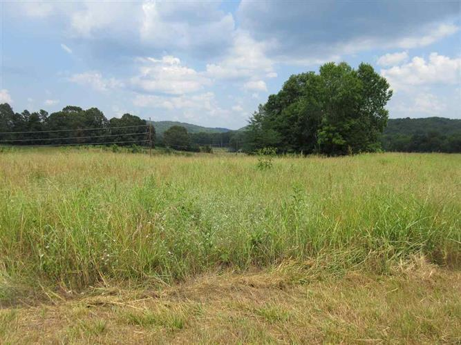 LOT 53 BILLY NANCE, Clifton, TN 38425 - Image 1