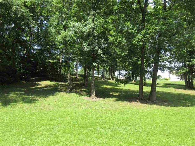 LOT 23 CHEROKEE LN, Bath Springs, TN 38311 - Image 1